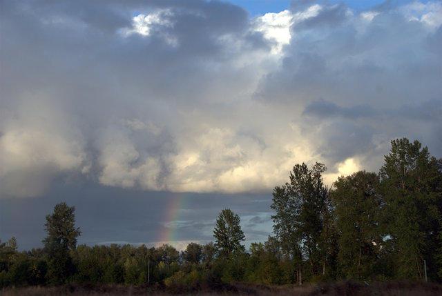 Rainbow near I-5, 44,146 octets